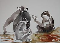 d chimps aquarel 47,x32,5